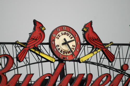 cardinalsbyTomWalsh.JPG